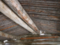 Cunningham cabin interior roof detail: