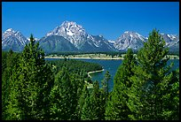 Teton range and Jackson Lake seen from Signal Mountain by Quang-Tuan Luong: