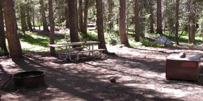 typical Tuolumne campsite: