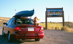 rental car and Bullwinkle by Wendy Sato:
