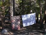 clothesline: