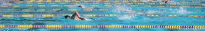 high elbow freestyle border: