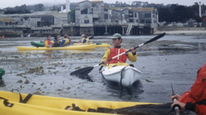 ocean kayakers in Monterey: