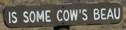sign is some cows beau: