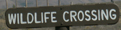 sign wildlife crossing: