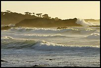 terragalleria waves 17 mile drive: