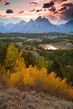 Grand Teton sunset by Ron Niebrugge: In the foreground, sagebrush, then a row of aspen, at the top clouds behind the teton range, photo used with permission from the photographer, Ron Niebrugge
