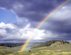 NPS photo rainbow over hayden valley yellowstone: