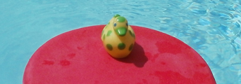 spotted rubber ducky on red kickboard.: rubber duck goes for a ride on a kickboard in a pool