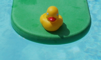 yellow rubber ducky on green kickboard: rubber ducky going for a ride on a kickboard