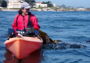 kayaker reacts to an otter who started to climb up on her kayak