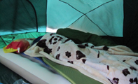 2 in tent winter 2011: 2 people in sleeping bags on a thick air mattress in a tent