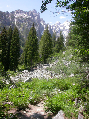 Cascade Canyon trail and mtn:
