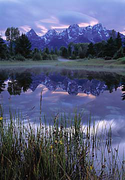 David Whitten photo beaver pond teton range: