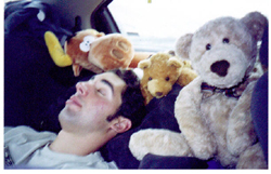 Kevin Halseth Bullwinkle and bears asleep on road trip by Wendy Sato: