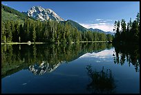 terragalleria Mount Moran reflected in Leigh Lake:
