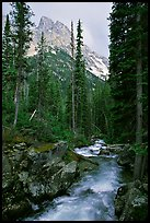 terragalleria cascade creek and tetons: