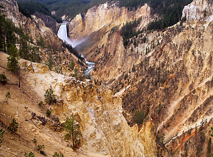 Yellowstone Falls, Grand Canyon of the Yellowstone river, Yellowstone National Park, Wyoming copyright david whitten: Yellowstone Falls, Grand Canyon of the Yellowstone river, Yellowstone National Park, Wyoming copyright david whitten