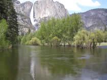 Yosemite falls May 23 2003: