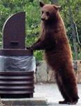 bearand trash can NPS photo: