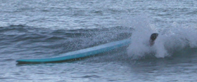 surfboard foam head oct 2003: