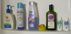bottles of shampoo in shower.: a row of bottles of shampoo in a shower