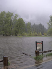flooded Sentinel meadow Yosemite May 16 2005 NPS photo: