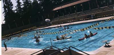 kayaks in pool: kayaks in pool