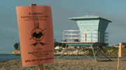 lg tower and warning sign Cowell's beach: