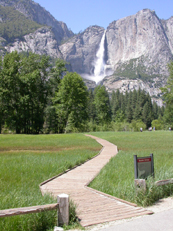 meadow Yosemite falls June 2005: