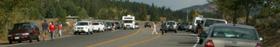 moose jam near entrance to Jackson lake lodge Sept. 2006: