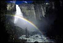 Nevada fall and rainbow QTL: