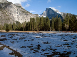 nps photo cook's meadow Jan 13 2010: national park service photo of cook's meadow in Yosemite valley with sparce snow taken on January 13 2010
