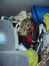 photo by Alanna Klassen car stuffed with gear: floor to ceiling in a sedan, bags of stuff