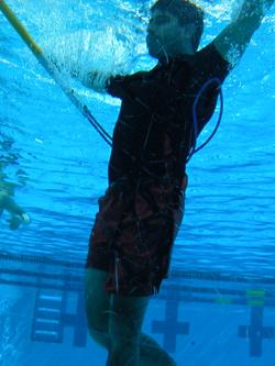 underwater sheperd's crook: