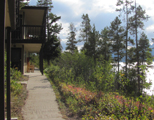 signal mountain lodge lakeside units: a row of two story hotel units with some trees blocking the views