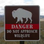 sign danger do not approach wildlife: