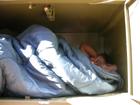 sleeping in bear box: