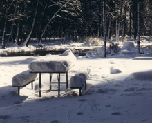 snow-covered picnic table:
