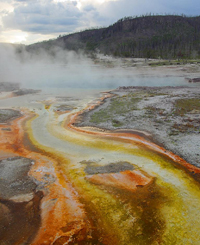 Yellowstone steaming thermal pools from public domain 200 pixels: