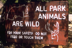 wildlife warning sign: