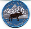 young naturalist badge smaller: