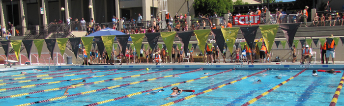 bleachers of athletes await swim start at triathlon: bleachers of athletes await swim start at triathlon, as lifeguards assist previous swimmers in the pool