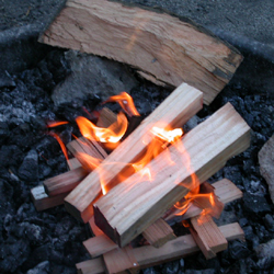 fire with first added wood: