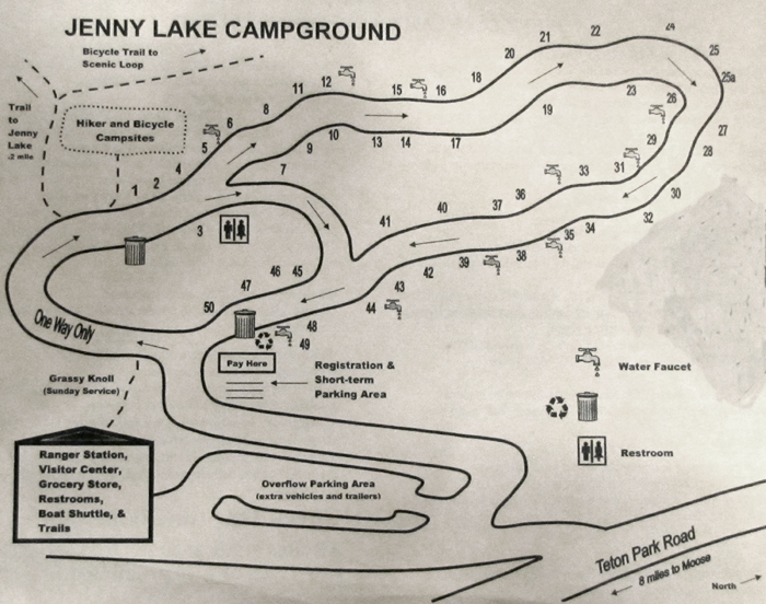 jenny lake campground map: map showing a loop of campsites and facilities