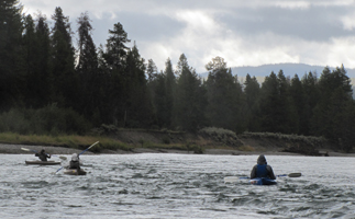 mini rapids on Snake river: three kayakers in swiftly moving water