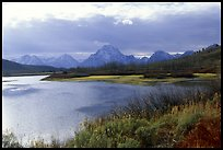 Oxbow Bend and Mt Moran QTL: