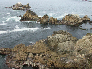 Point Lobos at entrance to whalers cove.: