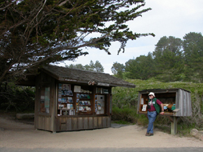 Docent at information station near Allan Memorial Grove: