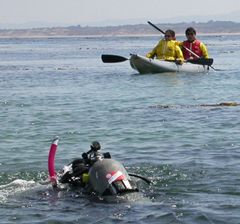 scuba diver and 2 kayakers may 2005: